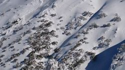Avalanche Warnings Issued For Victoria, And For A Bloody Good Reason