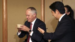 Turnbull 'Disappointed' At Japan's Whaling