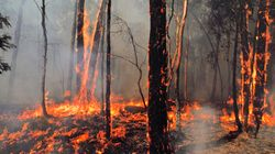 Victorian Bushfires: Damaging Winds, Extreme Heat