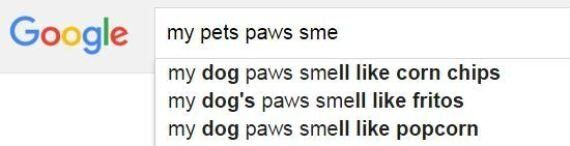 Have You Ever Noticed Your Pets Paws Smell Like Corn Chips? Yes,