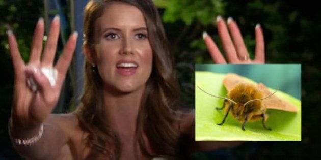 Married At First Sight Break Ups And Mothballs Beg The Question -- Will Any