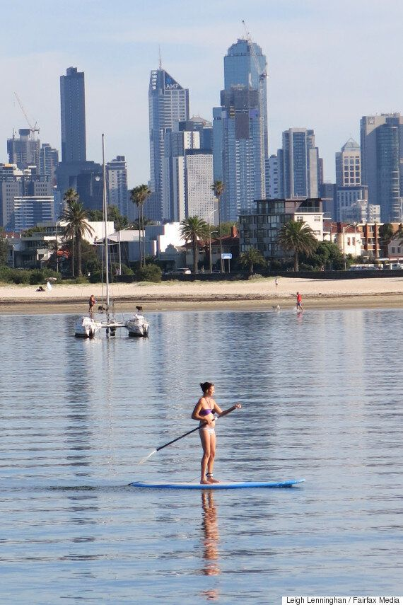 SUP With That? We're not Sure You Should You Be Stand-Up Paddling