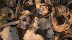 Islamic State Mass Yazidi Graves Unearthed In