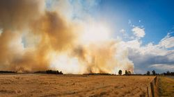 NSW Firefighters To Join Tasmanian Bushfire Fight, 4-Day Total Fire Ban
