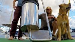 Australian Surfers' 'Seabin' Invention Goes Absolutely Viral, Attracts 120 Million