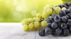 The Toughest Grapes In Australia Are Being Bred In Our Red