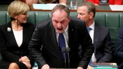 Barnaby Joyce Yells, Compares Labor To Carp During Bizarre Question Time