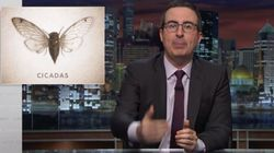 John Oliver Has A Message For All The Cicadas Emerging After 17 Years