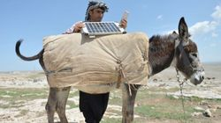 Even Turkish Shepherds Need To Charge Their