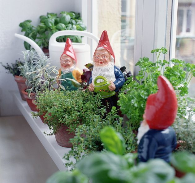 Little gardens add colour and freshness to your