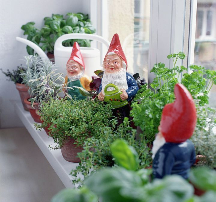 Little gardens add colour and freshness to your home.