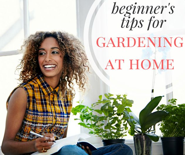 Growing Your Own Food At Home Is Easy, Here's