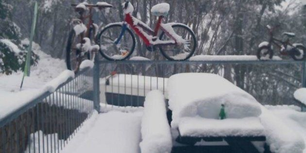 Maybe not the best weekend for a high country bike ride.