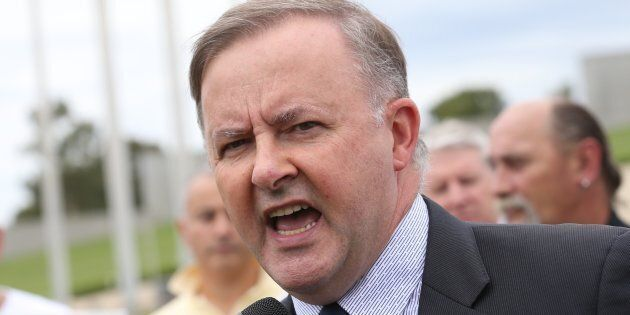Anthony Albanese has a fight on his