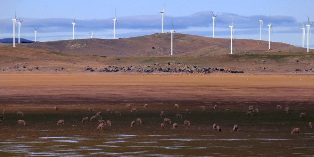 They might not look that pretty on the hills behind Lake George, but wind turbines are not all b-a-a-a-a-a-a-d news. In fact they're potential saviours for cash-strapped farmers.