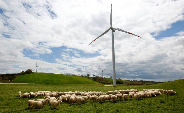 The Heroic Farmer Sticking It To The Government, One Wind Turbine At A