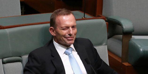 Former Prime Minister Tony Abbott insists the Abbott ear is
