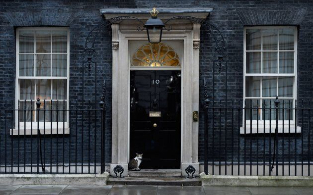Larry seems very much in-charge at 10 Downing Street.