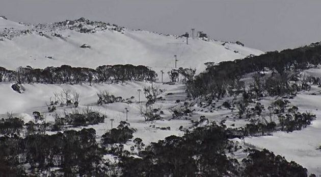 With fresh snow on top of the leftover winter snowpack, Antons T-bar at the top of Thredbo looks good...