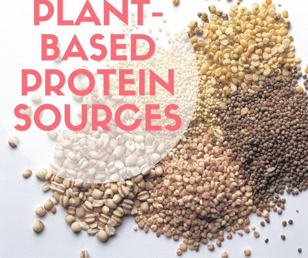Plant-Based Protein Every Vego And Vegan Should Be