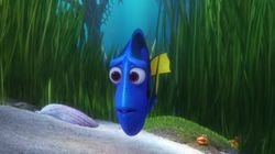 Another 'Finding Dory' Trailer Just Dropped Featuring Idris Elba As A Sea