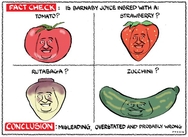 Dyson cartoon; re Johnny Depp, Barnaby Joyce, inbred with a tomato etc, Age Letters 26 May