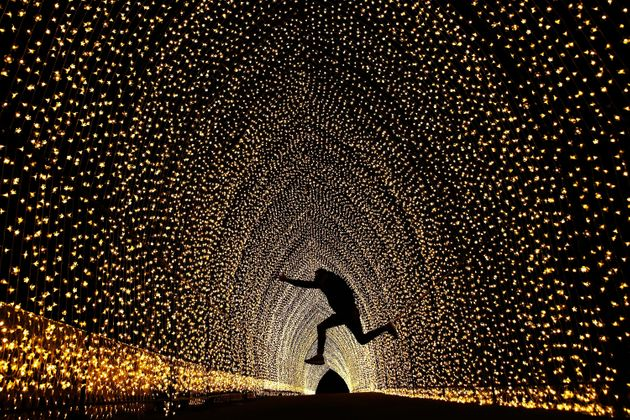 Jumping for joy in the 'Cathedral of Light' at The Royal Botanic