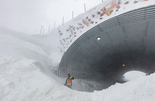 This is the skiers' bridge over the access road to Mt Hotham in Victoria. The road was closed for a day...