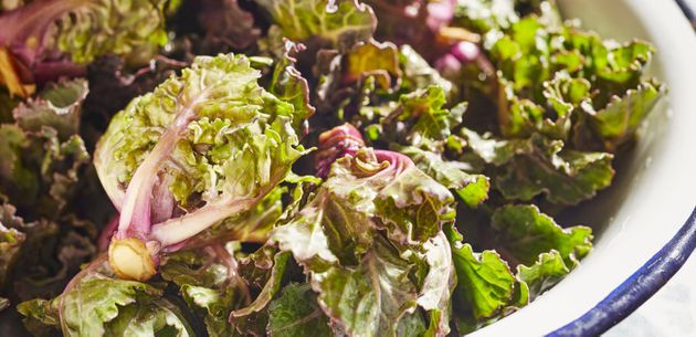 Kalettes are a cross between brussels sprouts and