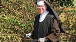 Hurricane Irma: Chainsaw Toting Nun Chops Up Fallen