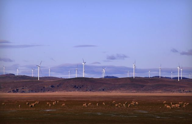 This is what the lake usually looks alike and these are the wind farms Joe Hockey famously whinged about...