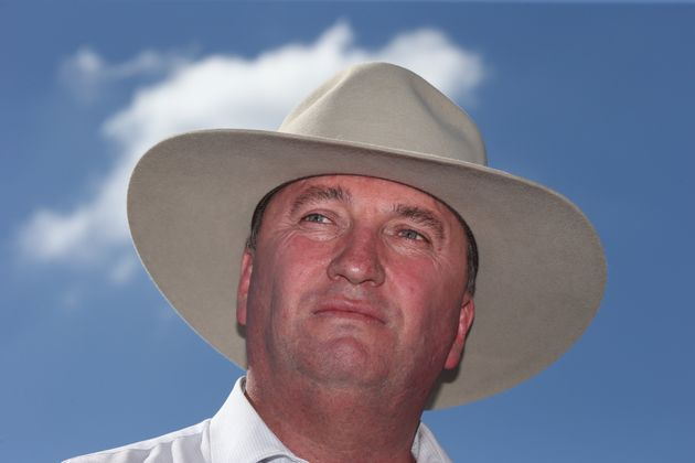 Deputy Prime Minister Barnaby Joyce, pictured here during a visit to a sweet potato farm at Gracemere...