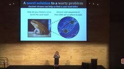 See Our Brightest Researchers Solve Australia's Problems In Three Minutes Or