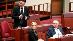Xenophon Won't Allow Parental Leave Changes To Kick In On January