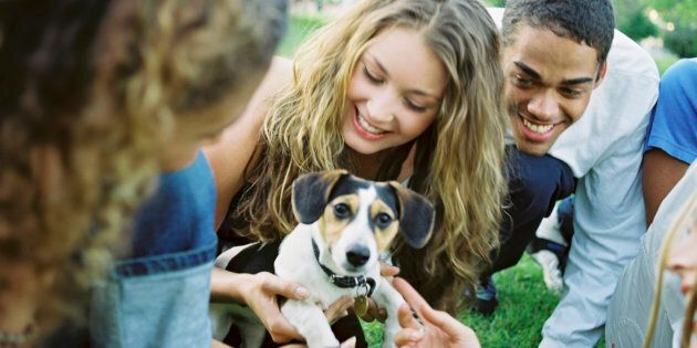 Yes, there's even Doggy Speed Dating, an open session for dog lovers to mingle with pooches.