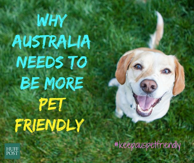Think Australia Is Pet Friendly? Think