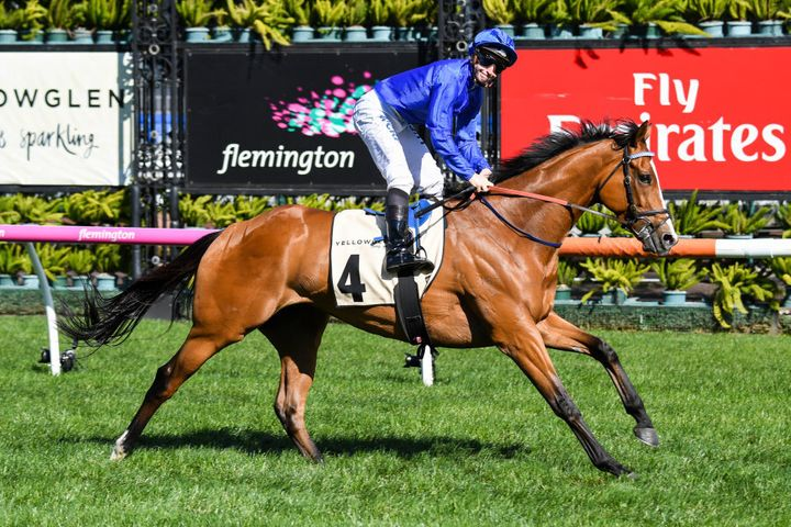 This is Melbourne Cup favourite Hartnell easily winning at Flemington a month ago. Its jockey wears the famous Godolphin blue. When there is more than one Godolphin runner in a race, the other riders wear the same blue silks with different coloured caps.