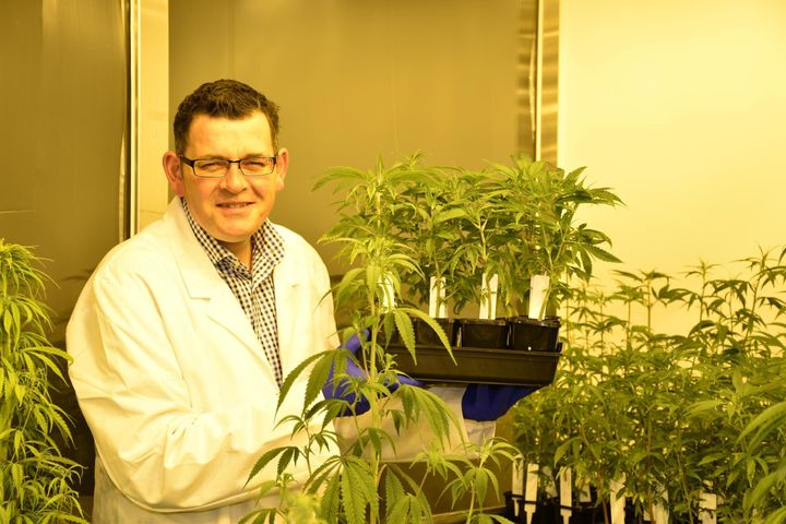 Victorian Premier Daniel Andrews at Victoria's secret medical cannibis lab, in August.