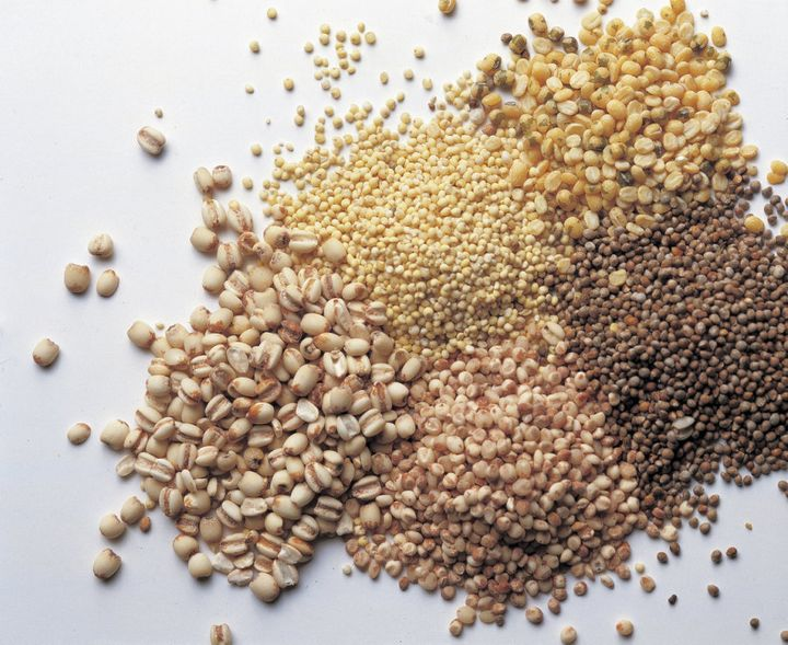 Grains contain all important soluable fibres that are tied to a healthy microbiota.