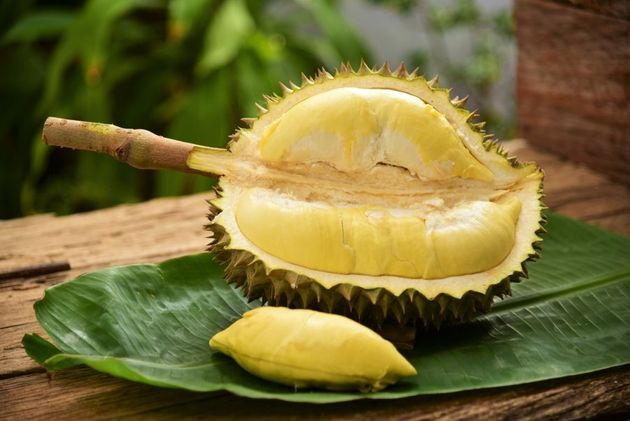Apparently after a few gag-induced attempts, durian becomes a complex flavoured, delicious fruit to