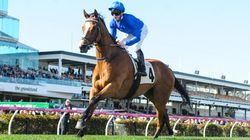 600 Grams That Will Decide the 2016 Melbourne