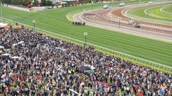 No Access To TV? Watch The 2016 Melbourne Cup Right Here,