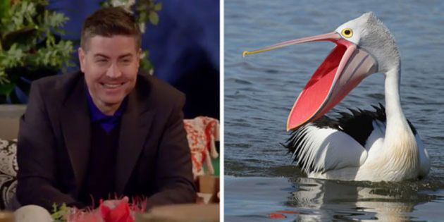 One of these is a publican and the other is a pelican, we just have no scientific way of knowing which...