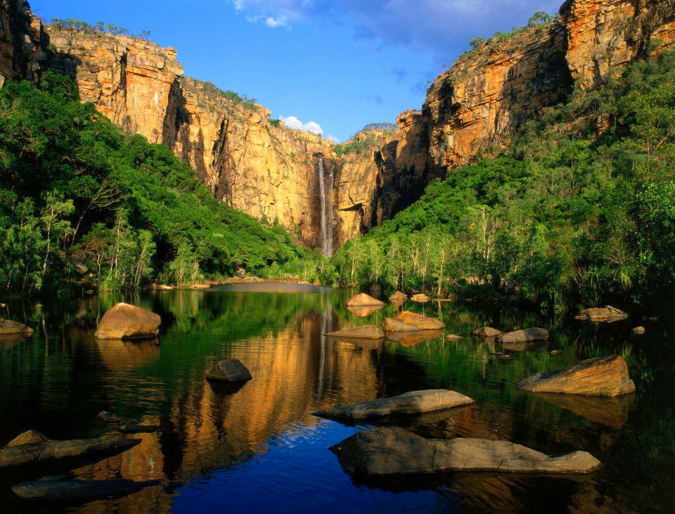 You can swim at Jim Jim Falls in Kakadu National Park but you might be joined by a freshwater crocodile.