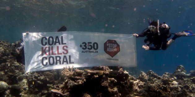 Even One Nation Voters Overwhelmingly Oppose Adani's Carmichael