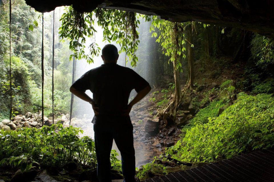 Crystal Falls Wonga Walk in Dorrigo National Park.