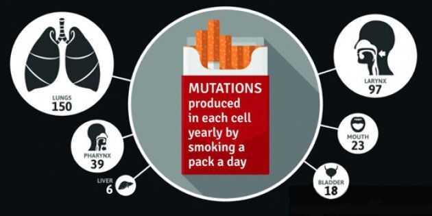 Cigarettes equal mutations in your
