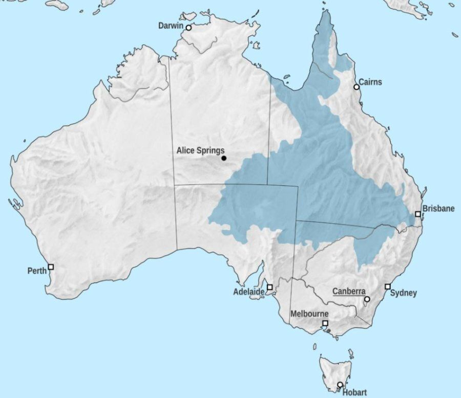 The Pilliga is situated at the area of shaded blue that dips down into