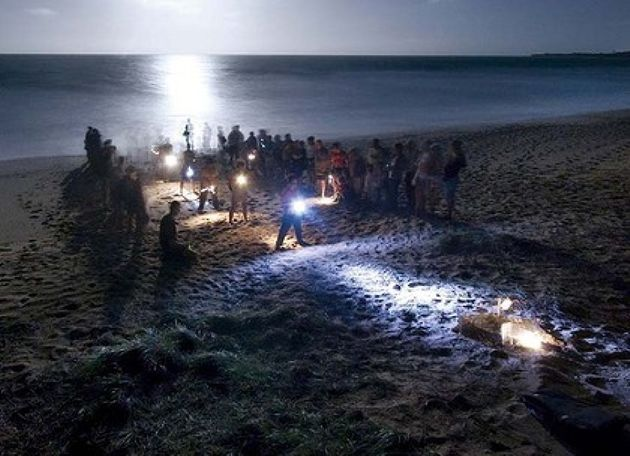 Visitors can watch a mother turtle on the beach at Mon Repos, laying her