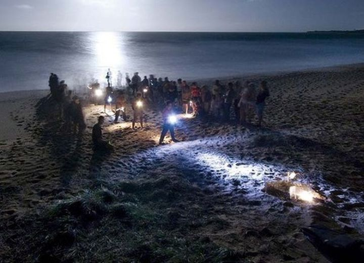 Visitors can watch a mother turtle on the beach at Mon Repos, laying her eggs.